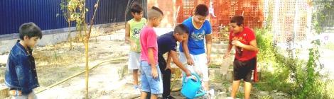 Niños regando y cuidando el huerto